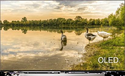 Televisores Smart TV OLED